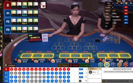 Panduan Bermain Live Casino Fight Bull